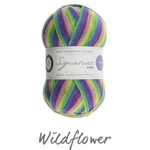 WYS WildflowerWinwick Mum Signature 4 ply Yarn 100g